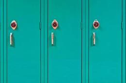 2017 Public High School Report Card