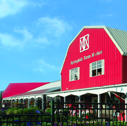 Springdale Farms: 70 YEARS STRONG