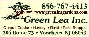 GreenLeaInc300x125